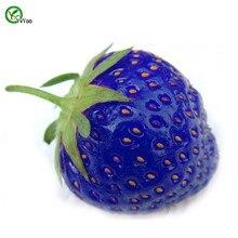100 PCS/bag Blue Strawberry plant delicious Fruit flores Patio Garden Strawberry mini bonsai home garden цена в Москве и Питере