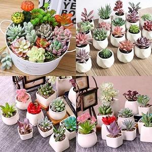 Image 2 - APRGARDEN 16pcs Artificial Succulent Mini Fake Flocking Plants for Lotus Landscape Decorative Garden Arrangement Home Desk