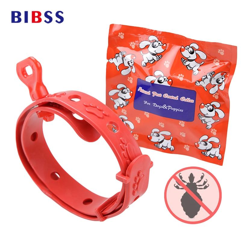 Insectos y pulgas de Summer Drive Collares de perro para perros y gatos con olor dulce Artículos de mascotas de longitud segura y ajustable