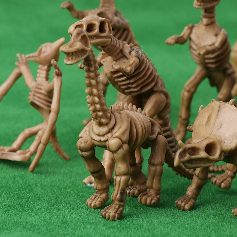 12pcs Dinosaur Fossil Skeleton Building Kits Figures Model Education