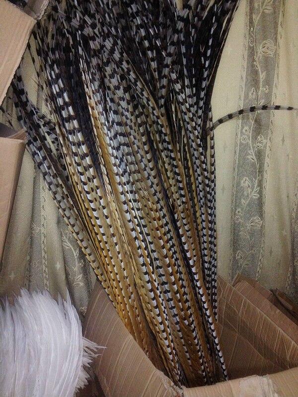 Doprava zdarma Velkoobchod 10ks vyděsit Natural Pheasant Tail 110-120cm / 44-48inch Dekorativní diy