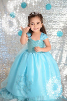 Princess Anna Elsa Dress Cosplay Costume Custom Kids Princess Dress Sequined Cotton Costume Baby Girls