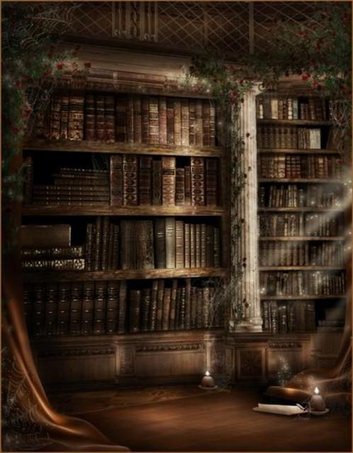 Cartoon Bookcase Bookshelf Library Wall Backdrop Vinyl Cloth High Quality Computer Print Party Photo Studio Background