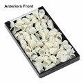 50 Unids Dental Materiales de Tipo Mixto Corona Temporal Anteriors Delanteras Dentista Dientes Productos Color de La Naturaleza