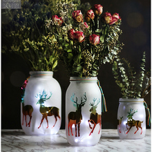 Frosted glass vase  DIY animal picture Creative Terrarium Hydroponic Plant Flower Tabletop Furnishing articles Wedding home Deco