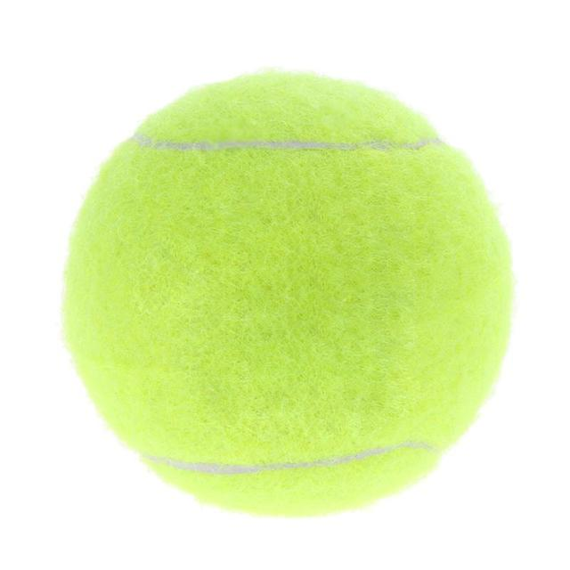 2 4 Inch Tennis Ball Run Fetch Throw Dogs Chew Bite Resistant Training Toy Pet Dog Funning