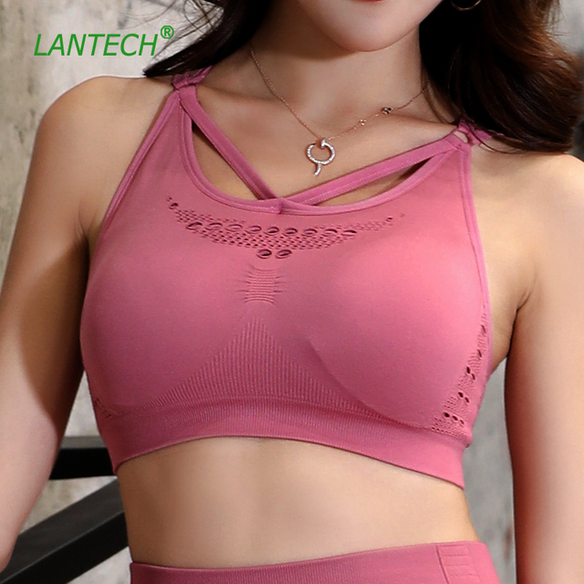 Aries Padded Training Sports Bra