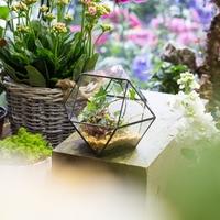 Handmade Gardening Bonsai Plant Pot Desktop Glass Geometric Terrarium Planter for Succulents Pot Pastoral Style Decoration