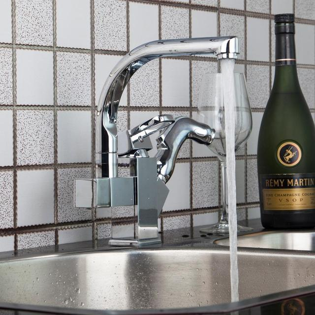 Ross Kitchen 2 Water Way&Pull out Spray Faucet Dual Spout Kitchen ...