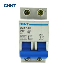 CHINT 2P 60A Miniature Circuit Breaker MCB DZ47-60 D60 Air Switch