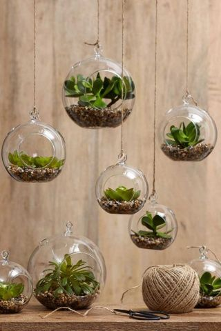 4PCS/pack globe hanging terrariums, indoor plant planter vase, outdoor  garden ornaments, great for air plants or succulents -in Vases from Home &  Garden on ...