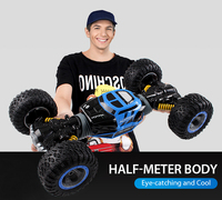 1 10 Scale Double Sided 2 4GHz RC Car One Key Transformation All Terrain Vehicle Varanid