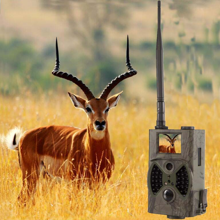 12MP 1080P GSM GPRS Trail Camera High Gain Antenna Hunting Game Wild Cameras  with long antenna Suntek hc300m arduino atmega328p gboard 800 direct factory gsm gprs sim800 quad band development board 7v 23v with gsm gprs bt module