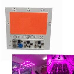 1 sztuk COB LED 100W 150w ac220V wysokiej mocy reflektor koralik DOB Chip pełne spektrum różowy lampa do uprawy roślin światła anty błyskawica 4KV