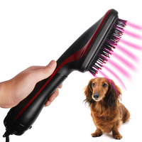 2 in 1 Pet Dry Hair Comb High Quality Portable Grooming Machine Anion Wind Dryer Dog Cat Massager