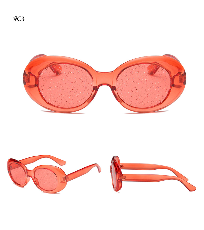 Oval Shape Sunglasses (24)