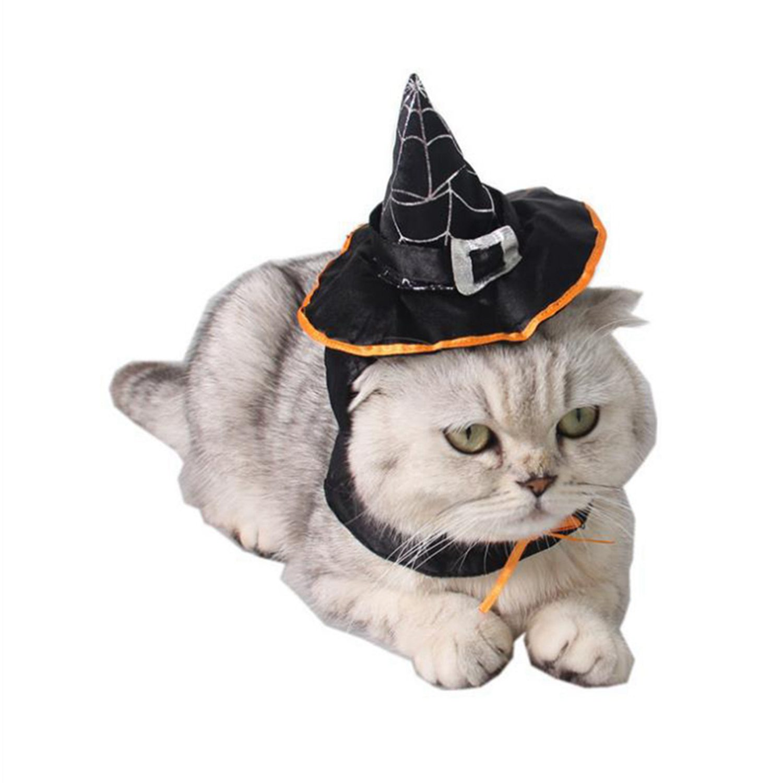 Pet supplies Dog Hat Holiday Hair dress Cool Cat Hat Bib Teddy Magic Wizard Cat Hat