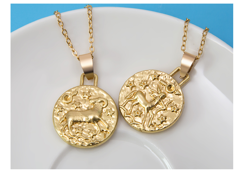 12 Constellation Jewelry Necklace Gold Virgo Libra Scorpio Sagittarius Capricorn Aquarius Zodiac Necklace Circle Pendant bijoux 16