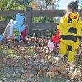 Pokemon Ir Equipo de Instinto Místico Valor Ash Ketchum Niño Pikachu Traje Del Mono de Los Mamelucos Del Bebé de La Muchacha traje de Cosplay