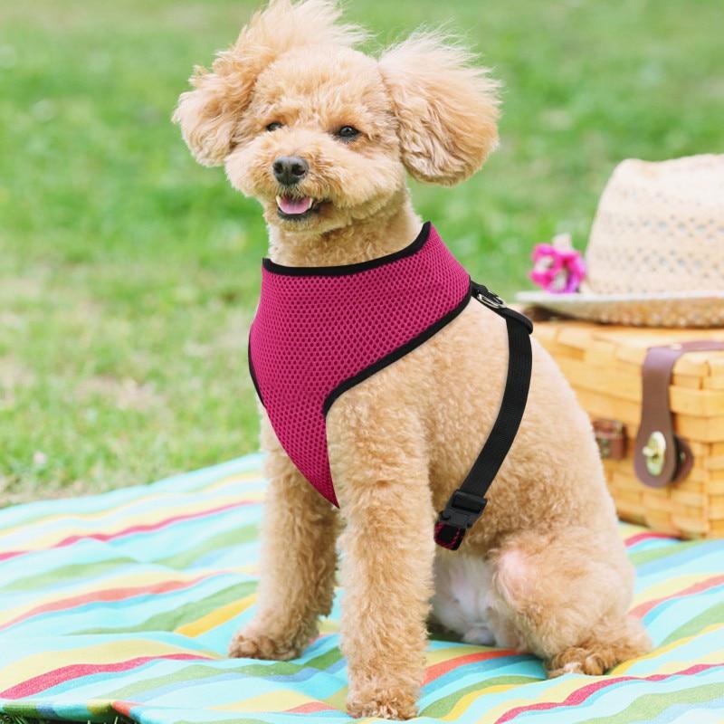 Hete Verkoop Huisdier Vest Hond Harness Training Zachte Mesh Huisdier Harnas Voor Kleine Honden Nylon Gepersonaliseerde Borstband Voor Chihuahua Puppy Katten 35