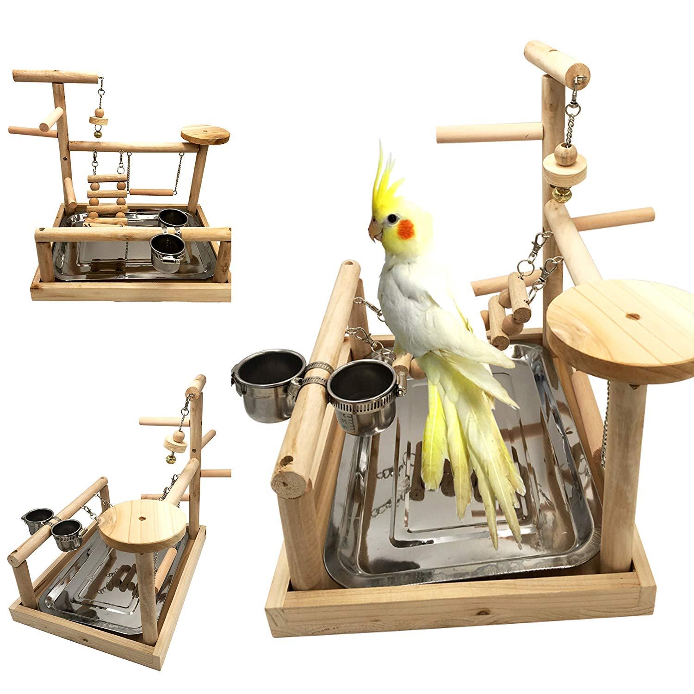 Perroquets Playstand oiseau aire de jeux bois perche Gym Stand parc oiseau échelles exercice Playgym Cockatiel oiseau dîner table jouet