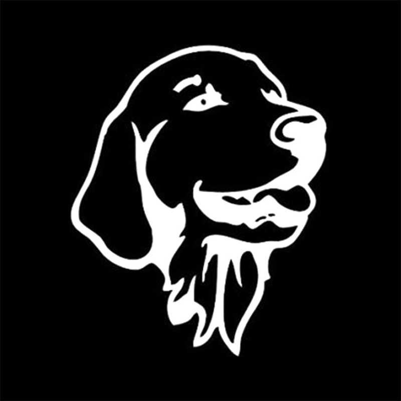 Seat Belt Dogs