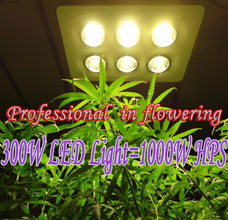 300W COB LED grow light 1000W HPS Professional in flowering More condenser More light More energy