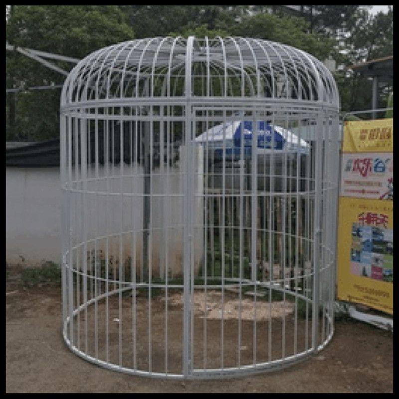 Super grande cage à oiseaux en fer forgé paon décoration de mariage personnalisée accessoires cage à oiseaux affichage extérieur grande cage - 6
