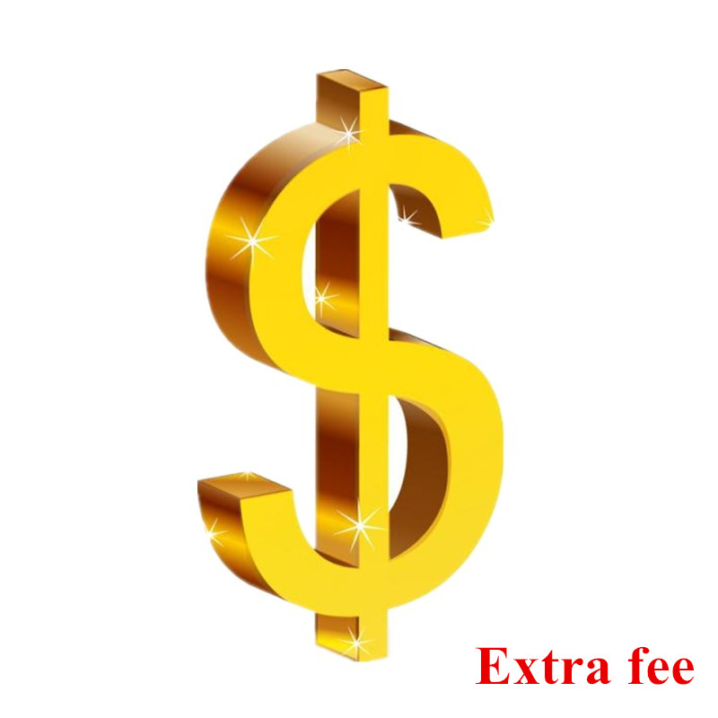1$ Extra Payment