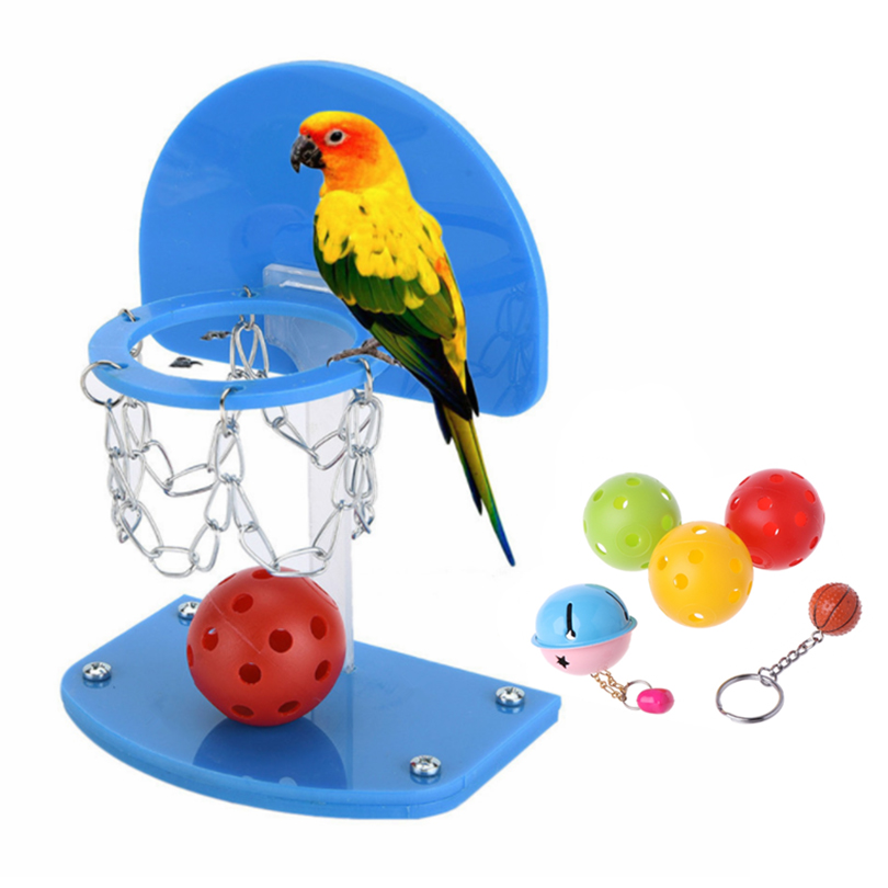 Petacc Bird Intelligence Toy Parrot Basketball Hoop Funny Parrot Toy with Colorful Basketballs and Bells