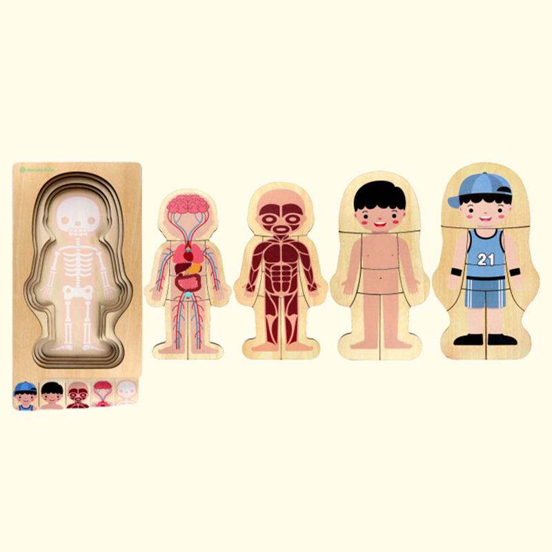 BBK nouveaux enfants jouets éducatifs en bois corps humain Puzzle garçons filles bois enfants Puzzles enfants éducation jouet