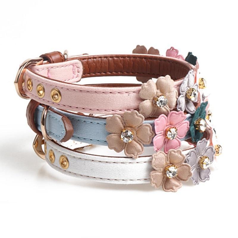 cute girl dog collars