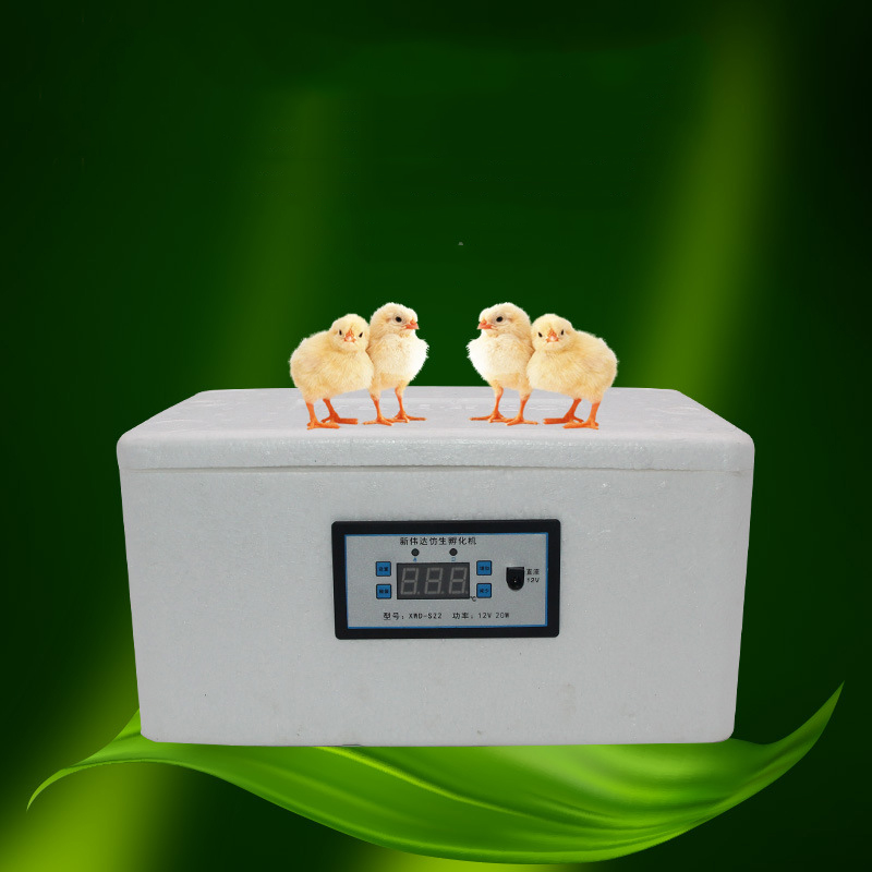 LK684 EPS Energy-saving Mute Bionic Water-bed Incubator 22 Eggs 12V/220V Mini Thermostat Hatcher Portable Incubation Tools