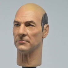 Custom 1/6 Scale Charles Francis Xavier figure head Hot toys X-Men Doctor Professor X Collection for 12inch action