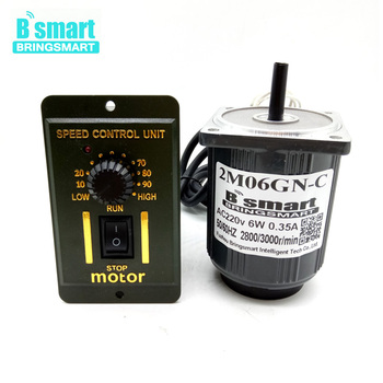 Bringsmart 220V AC Motor Single-Phase Motor 6W Slow Speed Reversible Mini Speed Regulation High Torque Micro Motor