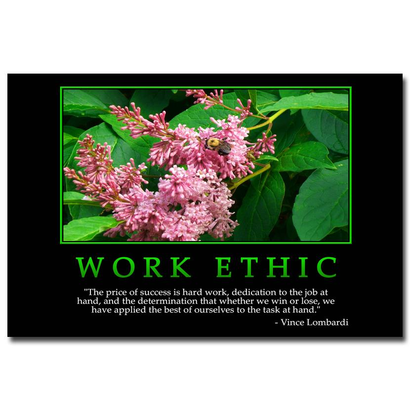 For The Workplace Motivational Quotes: WORK ETHIC Motivational Quotes Art Silk Fabric Poster
