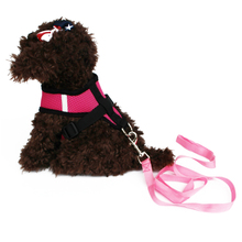 Adjustable Soft Breathable Dog Harness Nylon Mesh Vest Harness and Leash Rope for Pet Puppy Chest Strap
