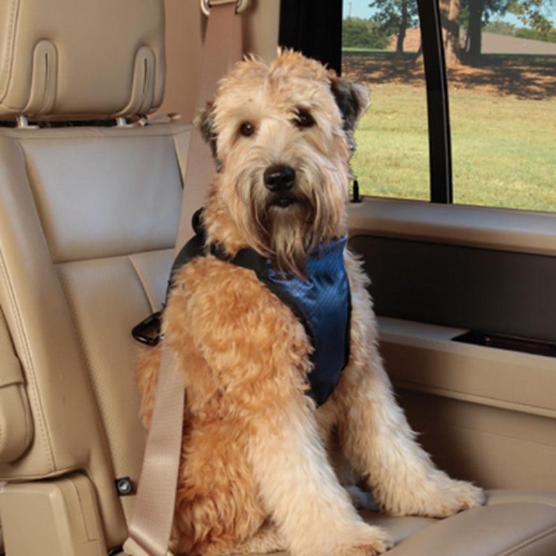 ᐂ3-54kg Small Big Dogs Car Seat Belt Update Automobile Car Dogs ...