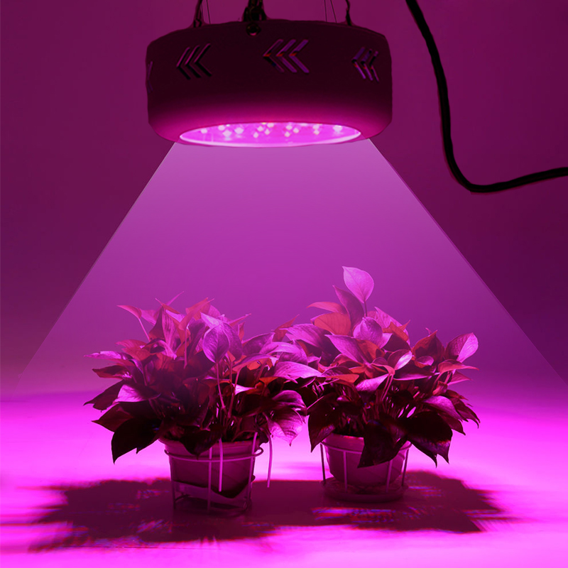 Haute qualité Fitolamp LED élèvent la lumière 360 W lampes pour plantes Phyto lampe Fito LED lampe à spectre complet plantes d'intérieur lumières avec prise
