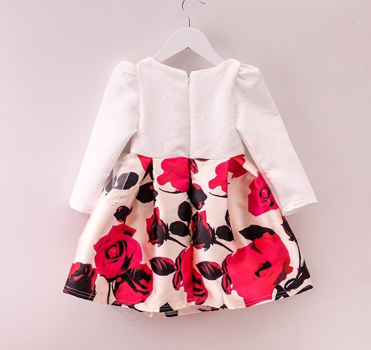 Doprava zdarma 2015 Baby Girls Princess Šaty Módní Podzimní - Dětské oblečení - Fotografie 2
