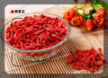 1000pcs/bag China Top Quality Super Big goji berry seeds goji berries goji seeds goji seed Free Shipping