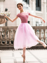 80CM Long Tutu Light Rose Pink Mesh Lace Adults Ballet Skirt Adult Women Swan Lake Ballerina Dance Tulle Elastic Waist Skirts