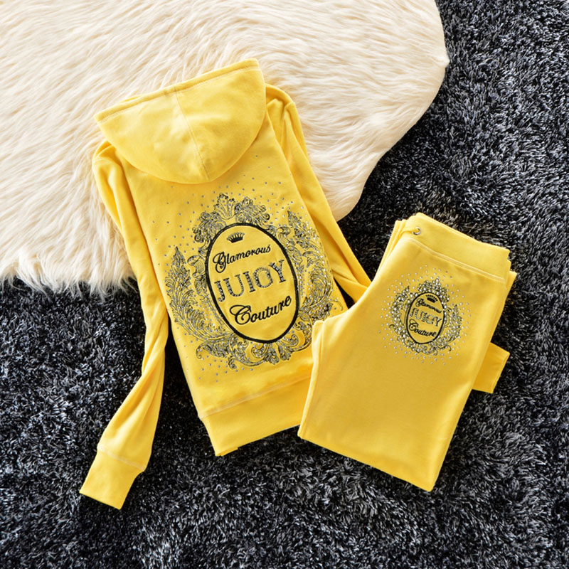 Spring/Fall 2020 Women's Brand Velvet Fabric Tracksuits Velour Suit Women Track Suit Hoodies And Pants Fat Sister Sportswear