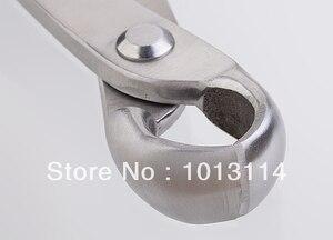 Image 3 - Coupe bordures concave de 210mm, niveau de qualité standard, 3Cr13, outils pour bonsaï en acier inoxydable fabriqué par la société tianbonsaï