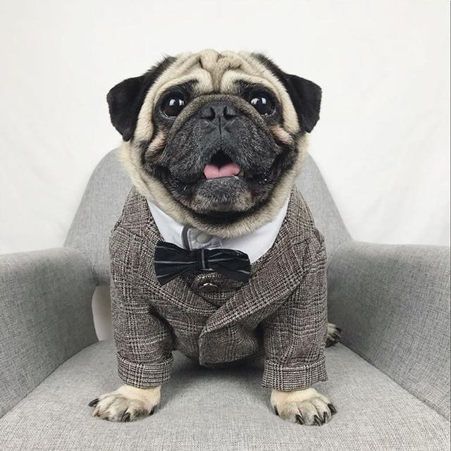Formale Vestiti Del Cane Da Sposa Pet Dog Suit Animali Cani Abbigliamento Per Ca
