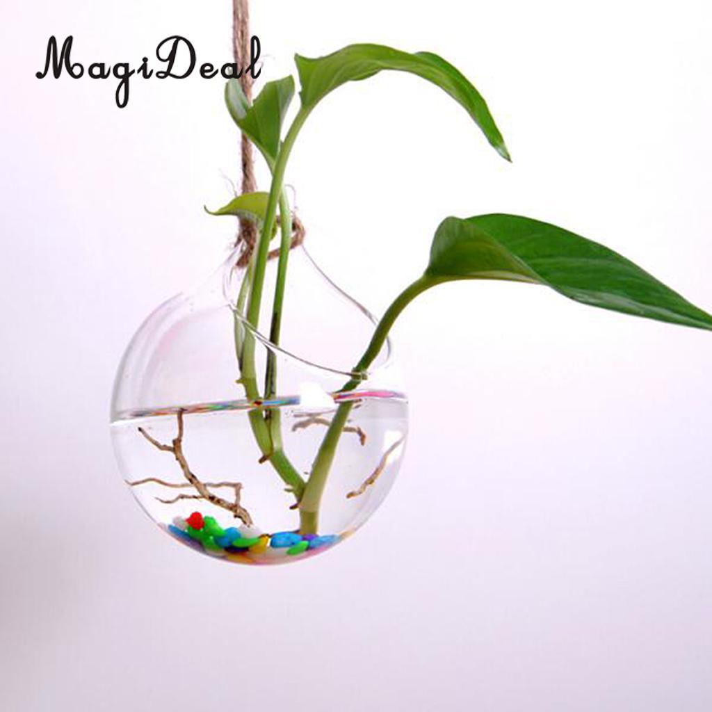 MagiDeal висит ясно Стекло ваза цветы завод ваза Террариум контейнер Декор для дома и сада Книги по искусству подарок