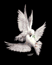 Needlework,DIY Cross Stitch,Sets For Embroidery kits,11CT&14CT,Peace Dove