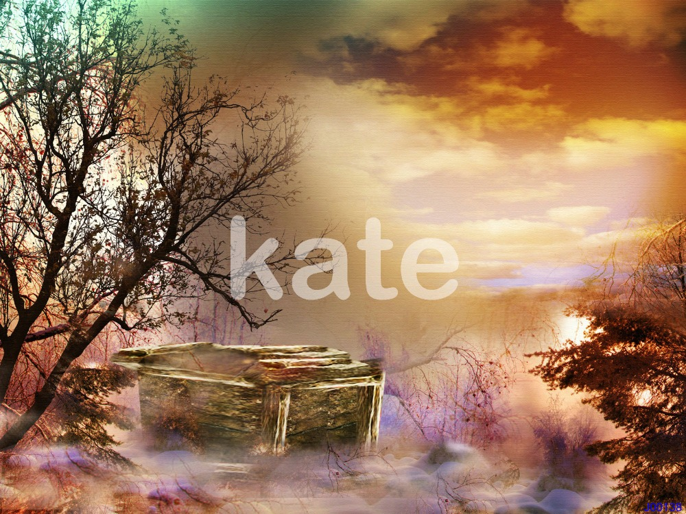 photo background Dead tree at dusk Kate background backdrop kate photo background scenery