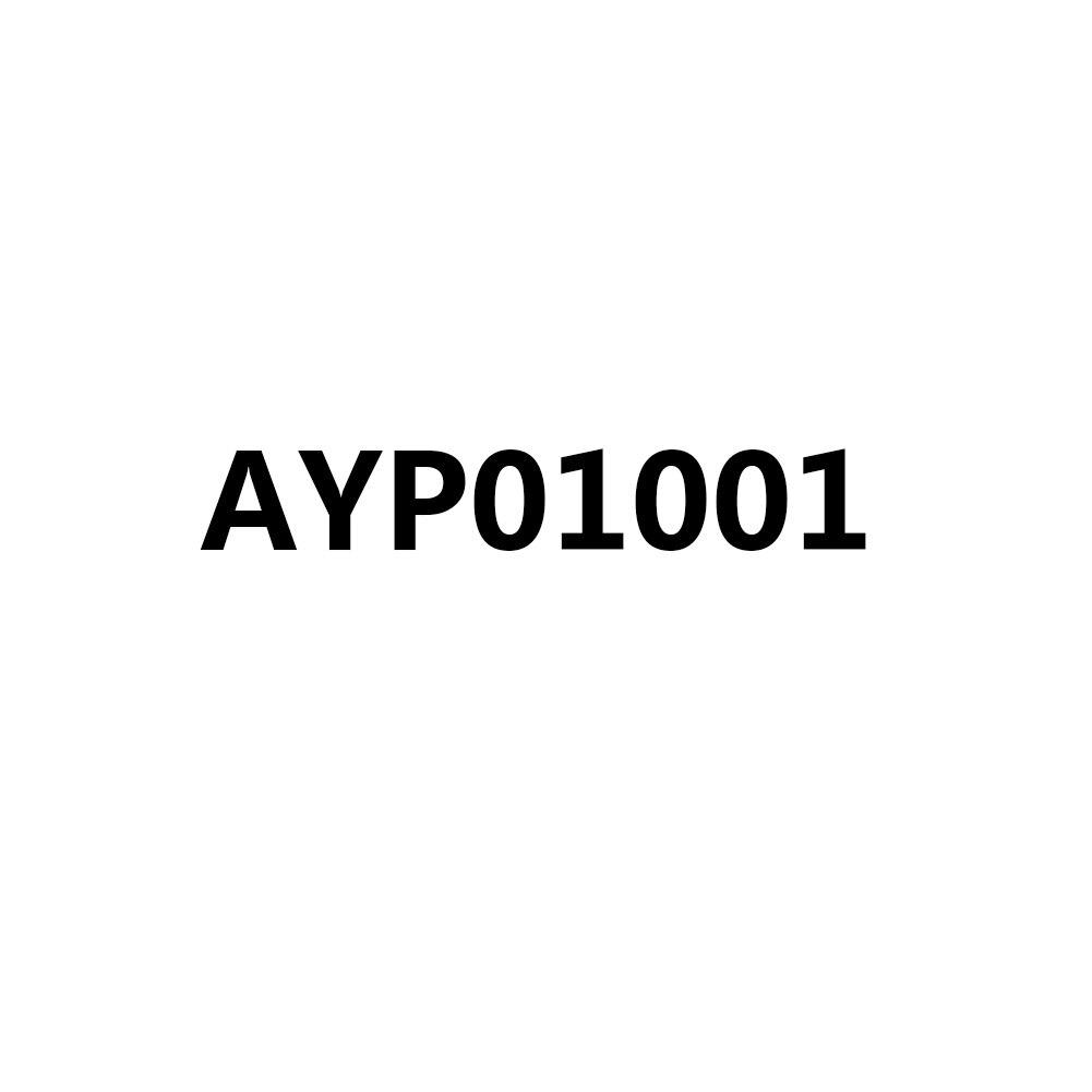 AYP01001