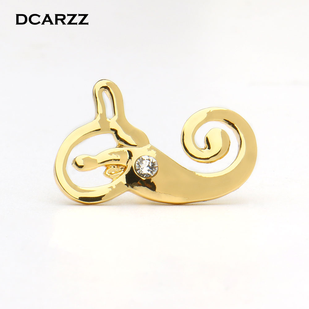 Buy anatomy the inner ear and get free shipping on AliExpress.com